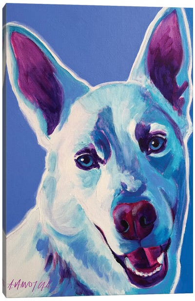 Joaquin The Husky Canvas Print #DWG73