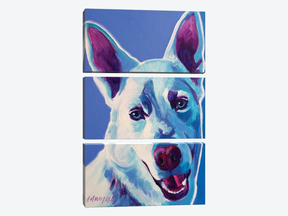 Joaquin The Husky by DawgArt 3-piece Canvas Wall Art