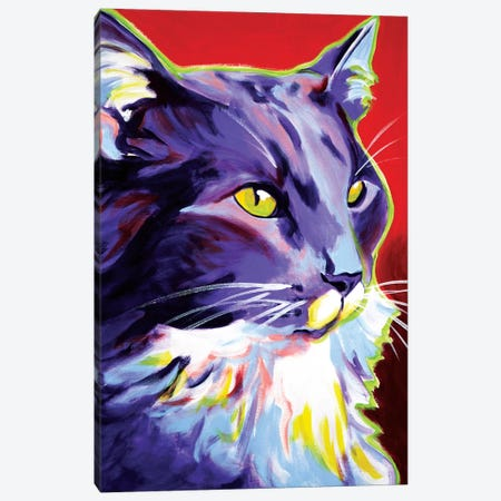 Kelsier Canvas Print #DWG74} by DawgArt Canvas Artwork