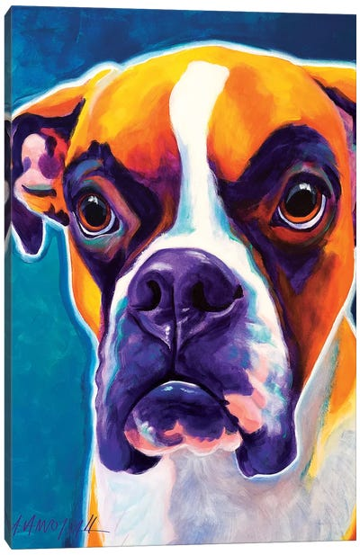 Koda The Boxer Canvas Art Print