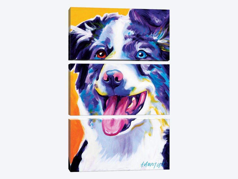 Aussie III by DawgArt 3-piece Canvas Art Print