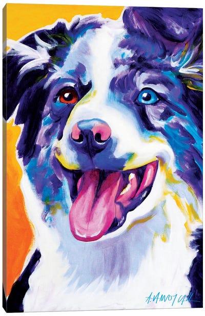 Aussie III Canvas Art Print