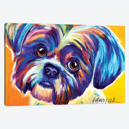 Lacey The Shih Tzu Canvas Print #DWG80} by DawgArt Canvas Artwork