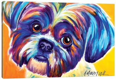 Lacey The Shih Tzu Canvas Art Print