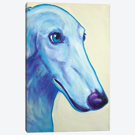 Baby Blue Borzoi Canvas Print #DWG8} by DawgArt Canvas Wall Art