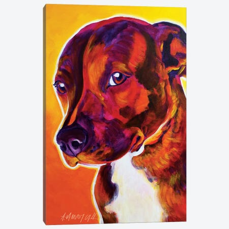 Luna The Pit Bull Canvas Print #DWG91} by DawgArt Canvas Print