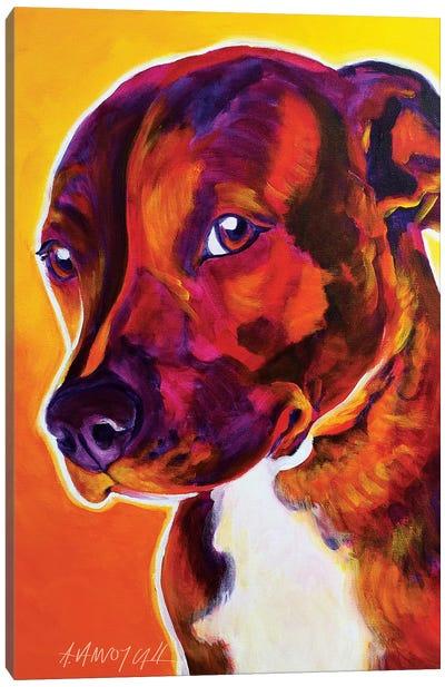 Luna The Pit Bull Canvas Art Print