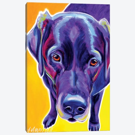 Messier  The Labrador Canvas Print #DWG96} by DawgArt Canvas Artwork