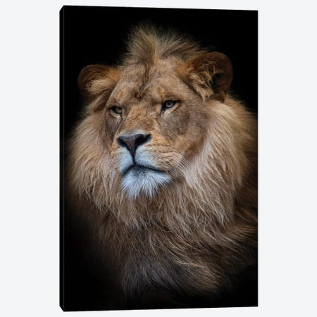 Ndid Canvas Print #DWH90} by David Whelan Canvas Wall Art