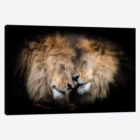 Brotherly Love Canvas Print #DWH9} by David Whelan Canvas Print