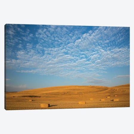 USA, Washington State, Palouse. Bales of straw in field. Canvas Print #DWI8} by Deborah Winchester Canvas Wall Art