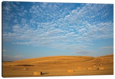 USA, Washington State, Palouse. Bales of straw in field. Canvas Art Print