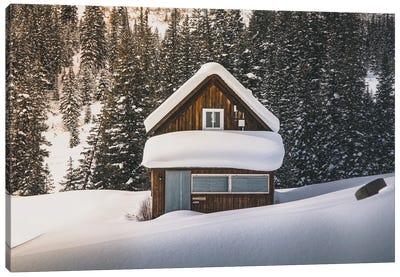 Alone In The Colorado Wilderness Canvas Art Print