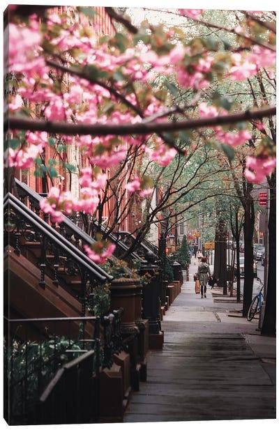 Spring Flowers In Brooklyn Heights Canvas Art Print