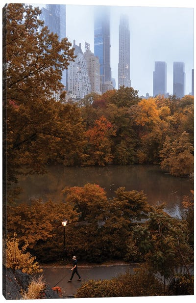 Man Walking Dog During Fall In Central Park Canvas Art Print