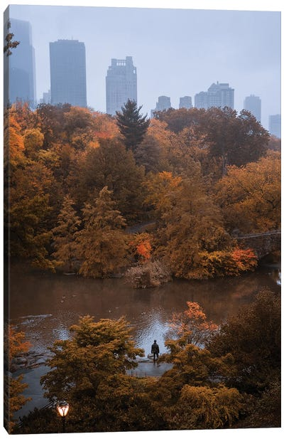 Lone Man In Central Park During Fall Canvas Art Print
