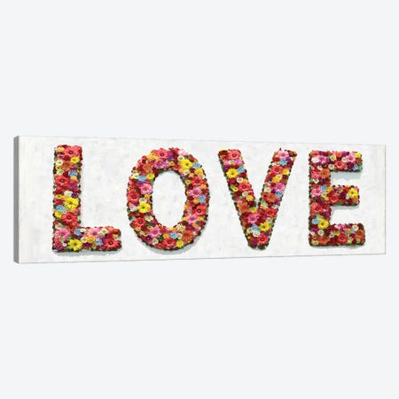 Floral Love 3-Piece Canvas #DWL20} by Jamie MacDowell Canvas Print