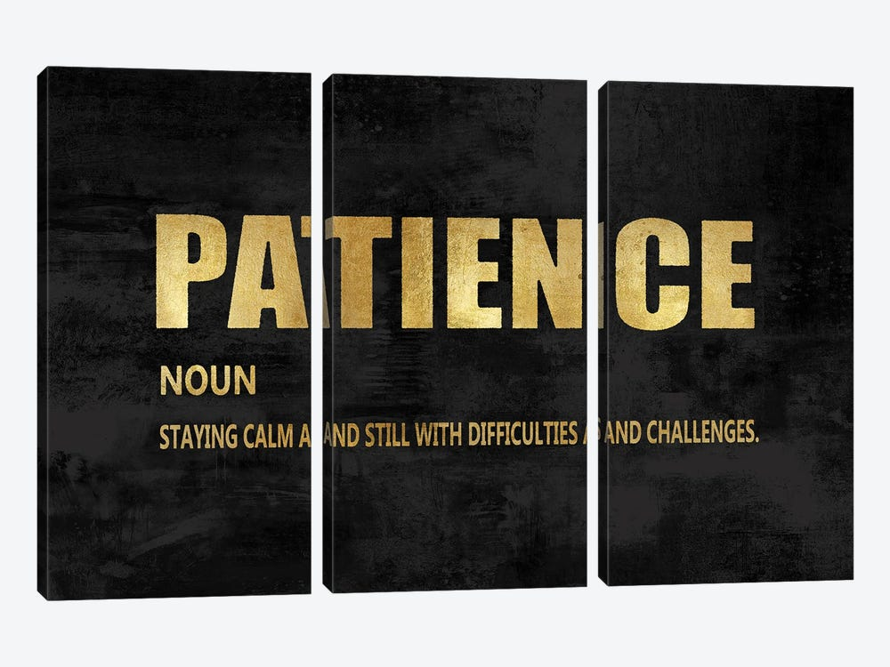 Patience in Gold by Jamie MacDowell 3-piece Canvas Art