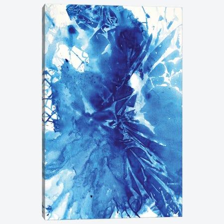 Shattered Canvas Print #DWO52} by Destiny Womack Canvas Art Print