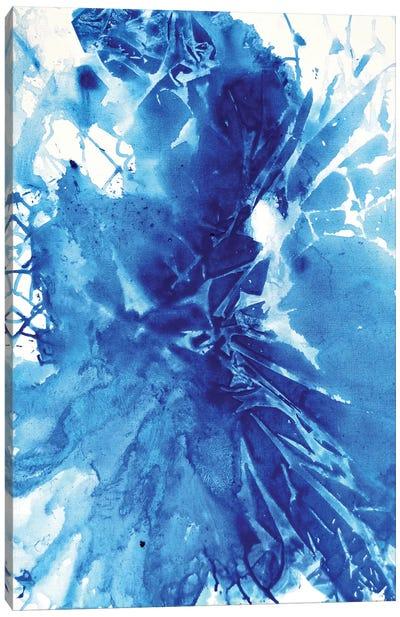 Shattered Canvas Art Print