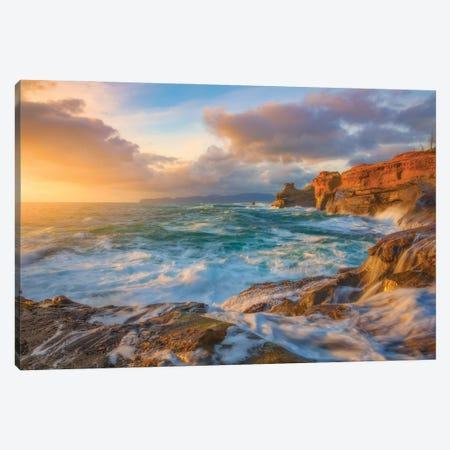Oregon Coast Wonder Canvas Print #DWP174} by Darren White Photography Canvas Art Print