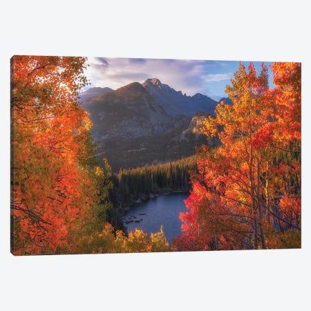 Rocky Mountain Autumn Canvas Print #DWP196} by Darren White Photography Art Print