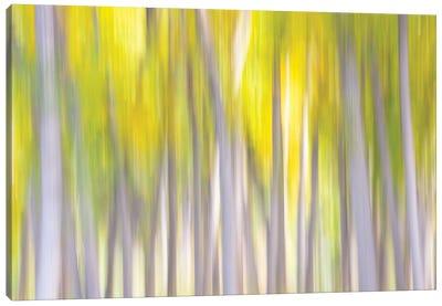 Autumn Whispers Canvas Art Print