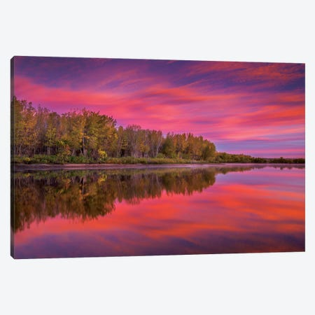 Autumn Splendor Canvas Print #DWP1} by Darren White Photography Canvas Art
