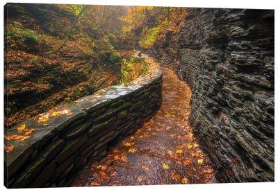 Autumn's Path Canvas Art Print