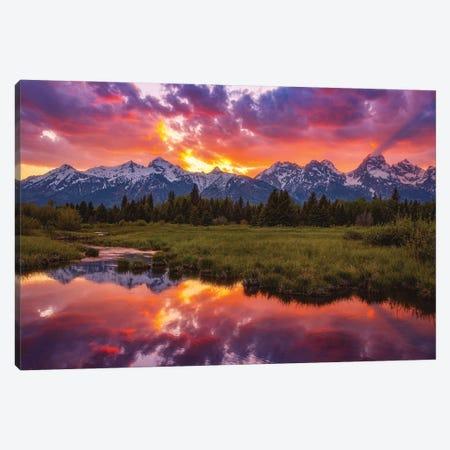 Black Ponds Sunset Canvas Print #DWP36} by Darren White Photography Canvas Art Print