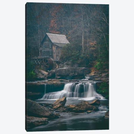 Faded Autumn Canvas Print #DWP82} by Darren White Photography Canvas Art Print
