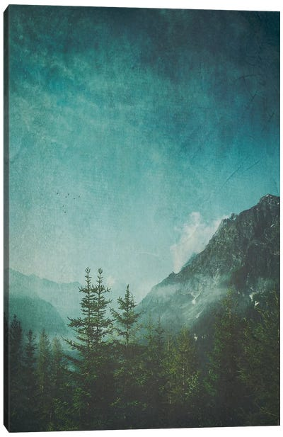 Valley View Canvas Art Print