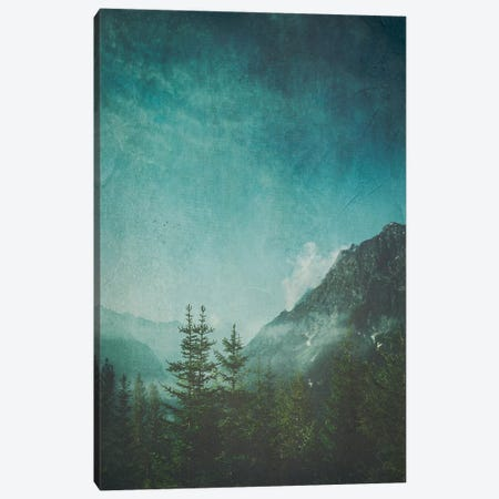 Valley View Canvas Print #DWU10} by Dirk Wuestenhagen Canvas Art Print