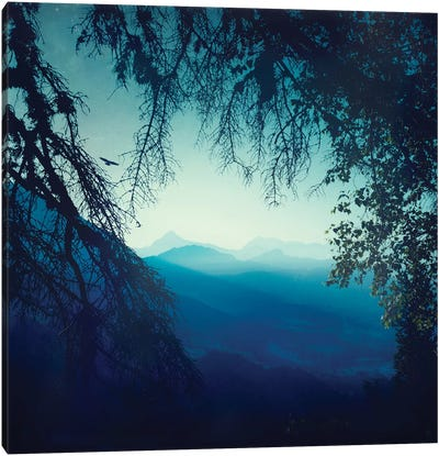 Blue Morning Canvas Art Print