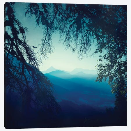 Blue Morning 3-Piece Canvas #DWU1} by Dirk Wuestenhagen Art Print
