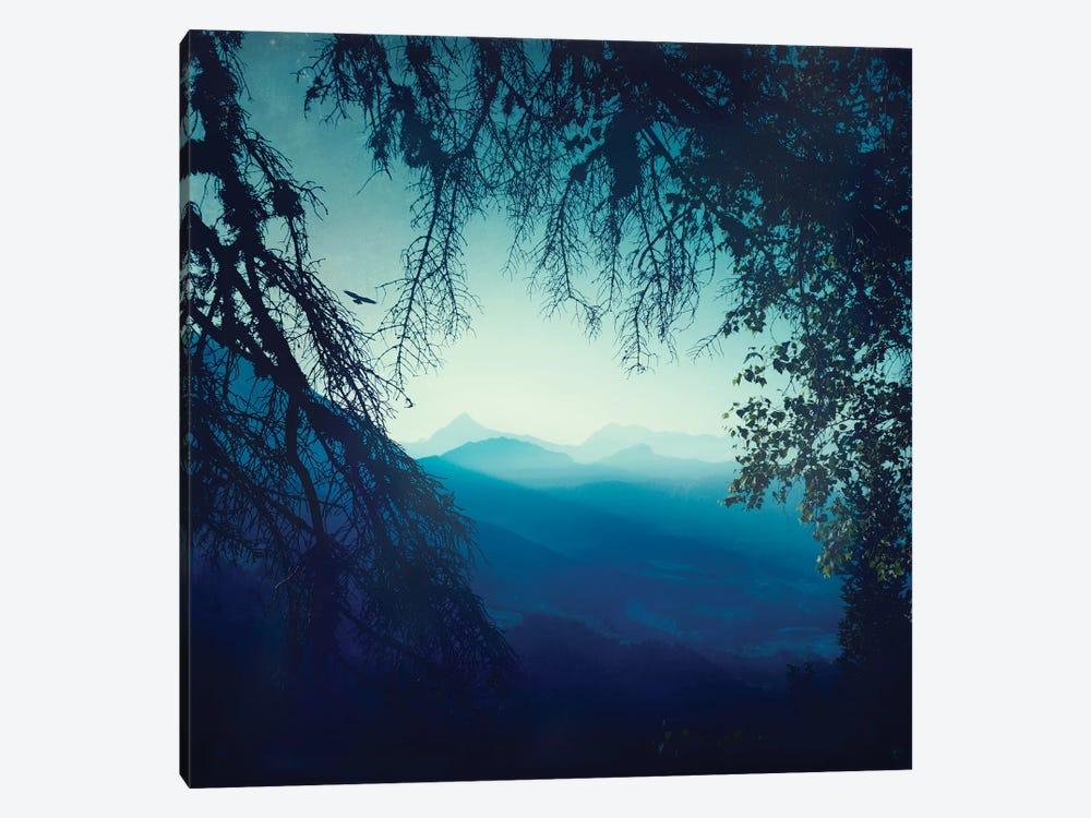 Blue Morning by Dirk Wuestenhagen 1-piece Canvas Print