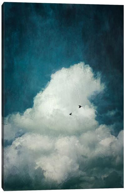 The Cloud Canvas Art Print