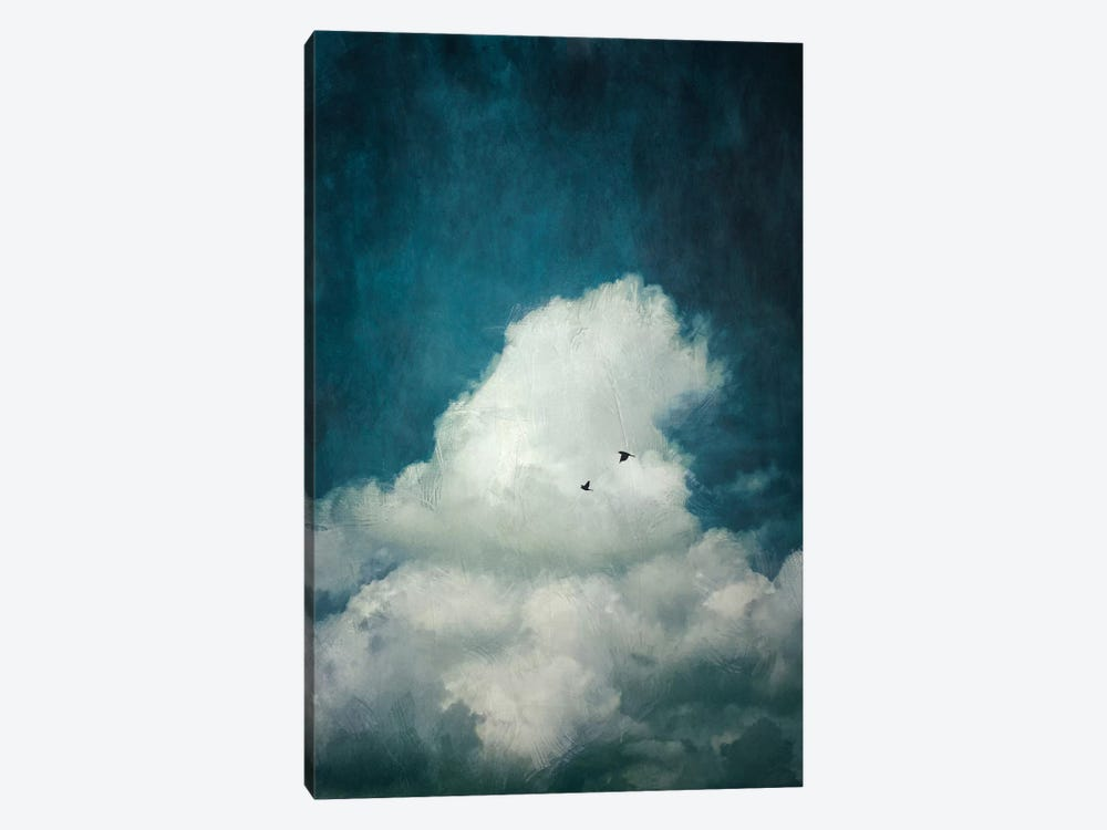 The Cloud by Dirk Wuestenhagen 1-piece Canvas Print