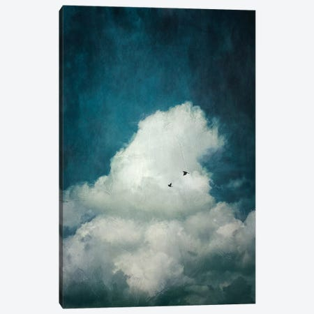 The Cloud Canvas Print #DWU7} by Dirk Wuestenhagen Canvas Artwork
