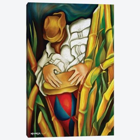 Rumba On Sugar Canes Canvas Print #DXM36} by Dixie Miguez Canvas Artwork