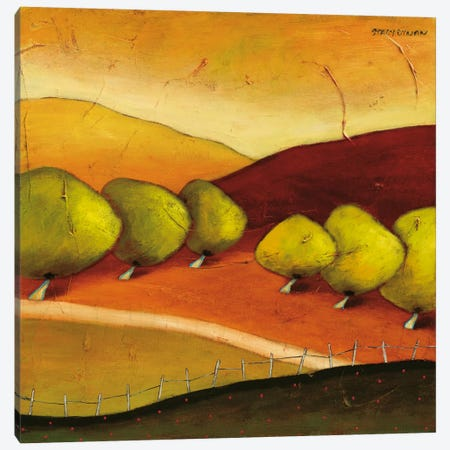 Roads II Canvas Print #DYN6} by Stacy Dynan Canvas Art