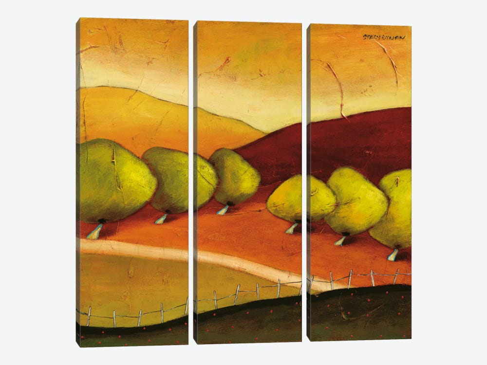 Roads II by Stacy Dynan 3-piece Canvas Art