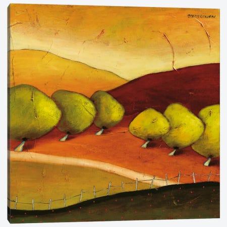 Roads II Canvas Print #DYN6} by Stacy Dynan Canvas Art