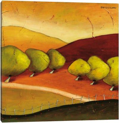 Roads II Canvas Art Print