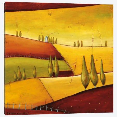 Roads III Canvas Print #DYN7} by Stacy Dynan Canvas Art