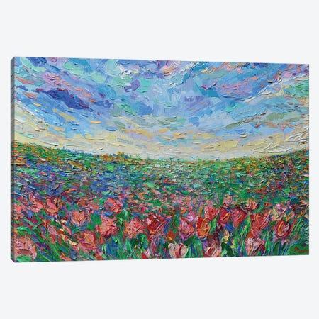 Field of Tulips Canvas Print #DZB13} by Adriana Dziuba Art Print