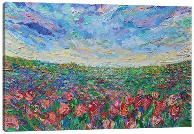 Field of Tulips Canvas Art Print