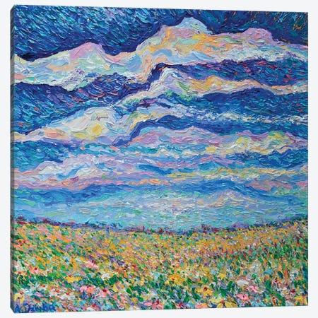 Spring Meadow Canvas Print #DZB33} by Adriana Dziuba Canvas Print