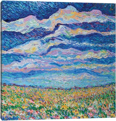 Spring Meadow Canvas Art Print