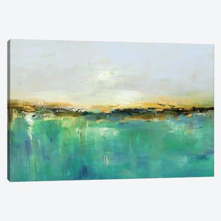 Abstract Landscape XIX Canvas Print #DZH10} by Radiana Christova Art Print